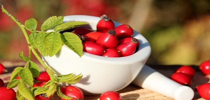 Rezepte für Hagebutten: Wirkung & Anwendung