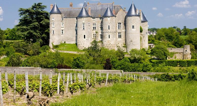 So ist die Loire zum Beispiel auch eines von Frankreichs anerkanntesten Weinanbaugebieten, wobei die unter der berühmten Dachmarke Val de Loire durch Experten mit Leidenschaft kultivierten Reben natürlich vom legendären Mesoklima im Tal der Loire nur profitieren können. (#02)