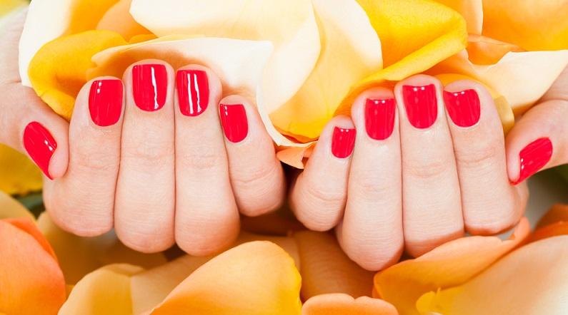 Die Farben Rot und Orange sind Signalfarben und fallen entsprechend auf. (#01)